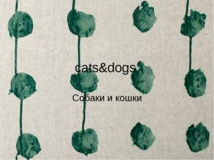 cats&dogs Собаки и кошки