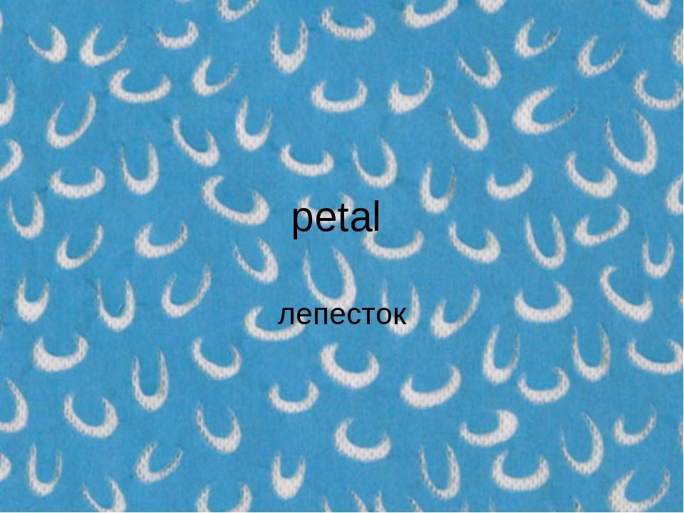 petal лепесток