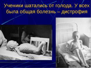 Ученики шатались от голода. У всех была общая болезнь – дистрофия