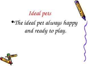 Ideal pets The ideal pet always happy and ready to play.