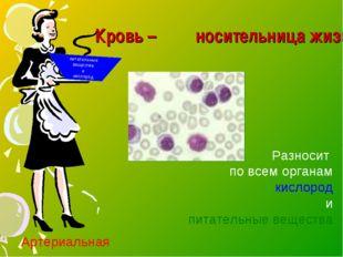 Кровь – носительница жизни питательные вещества и кислород Разносит по всем
