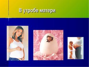 В утробе матери