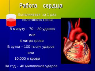 Работа сердца В сутки – 100 тысяч ударов За год - 40 миллионов ударов В минут