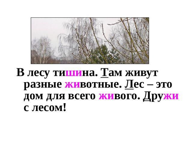 В лесу тишина. Там живут разные животные. Лес – это дом для всего живого. Др...