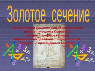 «В геометрии существует два сокровища: первое – теорема Пифагора, второе – зо