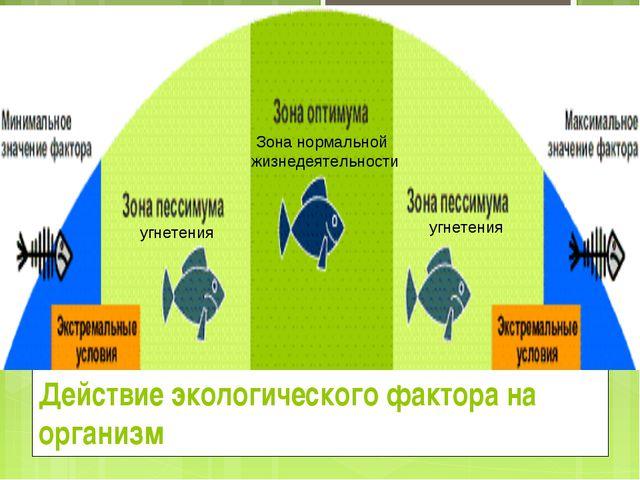 Действие экологического фактора на организм угнетения угнетения Зона нормальн...