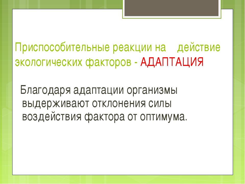Приспособительные реакции на действие экологических факторов - АДАПТАЦИЯ Благ...