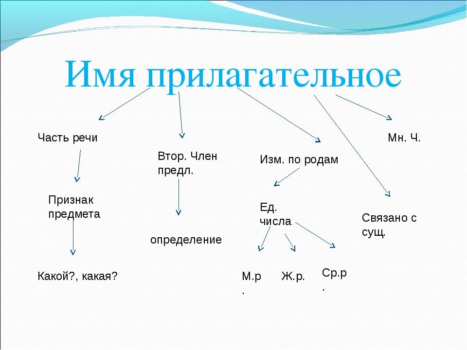 Имя прилагательное Часть речи Признак предмета Какой?, какая? Втор. Член пред...