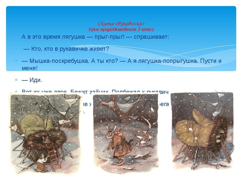 А в это время лягушка — прыг-прыг! — спрашивает: — Кто, кто в рукавичке живет...