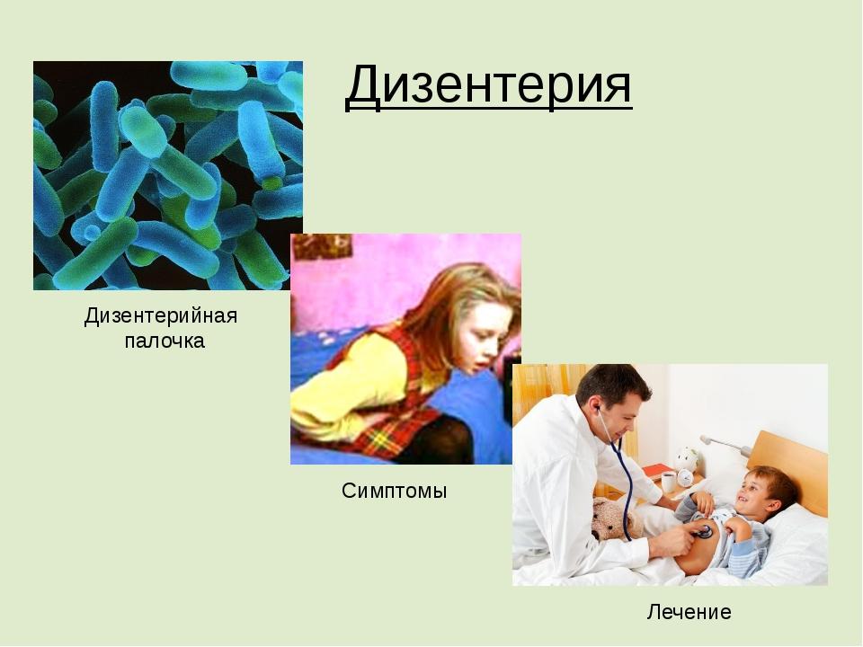 Дизентерия Дизентерийная палочка Симптомы Лечение