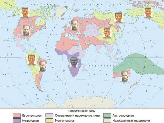 Ученые выделяют три главные или большие расы: Европеоидная Монголоидная Негро...