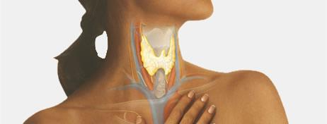 C:\Users\gena\Desktop\hyperthyroidism-symptoms.jpg