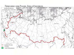 граница России столица зона субтропиков Природные зоны России. Зона субтропик
