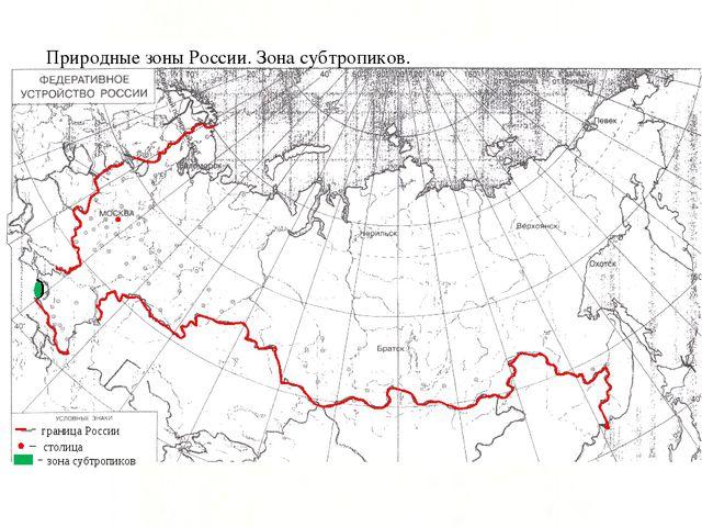 граница России столица зона субтропиков Природные зоны России. Зона субтропик...