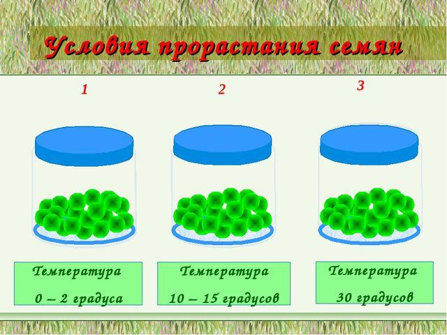 Условия прорастания семян 1 2 3 Температура 0 – 2 градуса Температура 10 – 15...