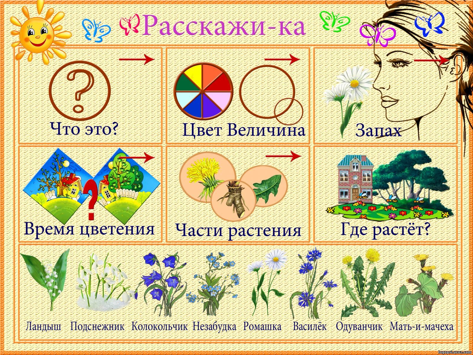Карточки схемы картинок для рассказа