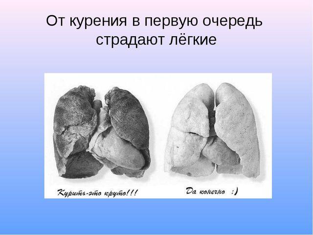 От курения в первую очередь страдают лёгкие