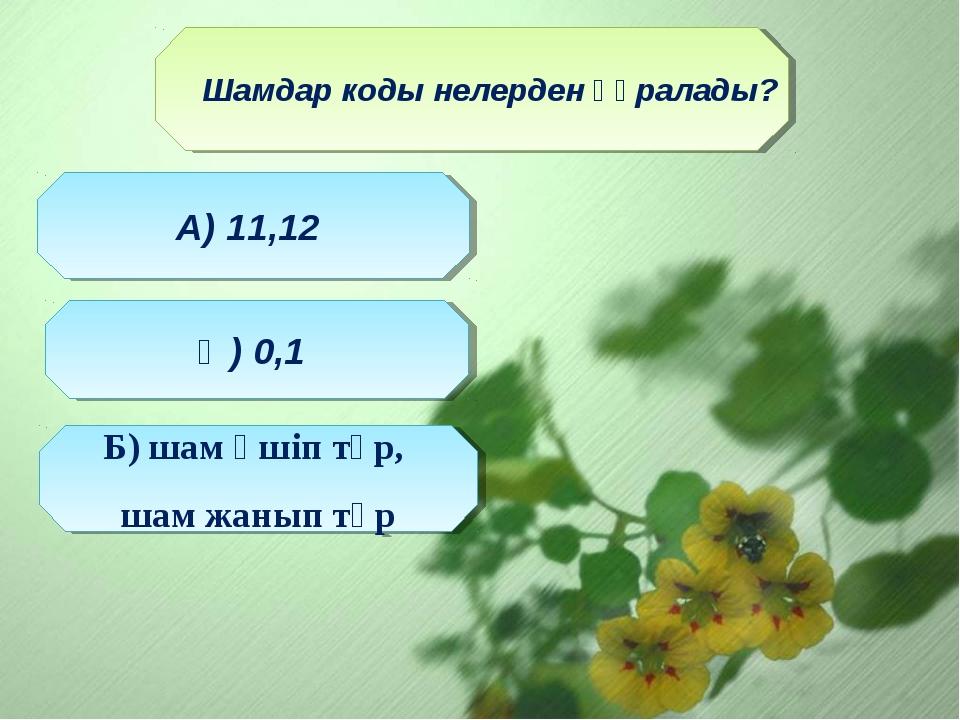 Шамдар коды нелерден құралады? Ә) 0,1 А) 11,12 Б) шам өшіп тұр, шам жанып тұр