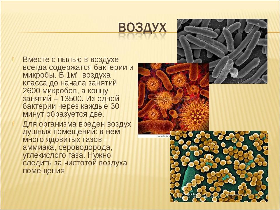 Вместе с пылью в воздухе всегда содержатся бактерии и микробы. В 1м3 воздуха...