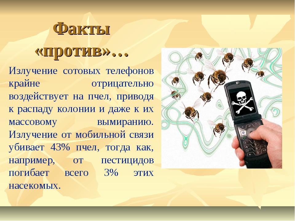 Излучение сотовых телефонов крайне отрицательно воздействует на пчел, приводя...