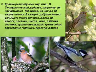 Крайне разнообразен мир птиц. В Теллермановской дубраве, например, их насчиты