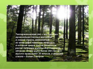 Теллермановский лес – это один из древнейших лесных массивов в нашей стране,