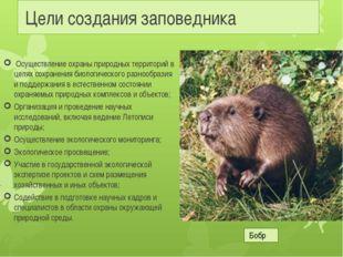Цели создания заповедника Осуществление охраны природных территорий в целях