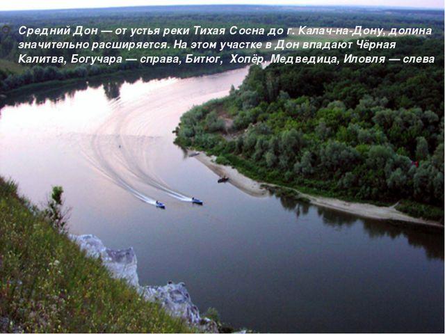 Средний Дон — от устья реки Тихая Сосна до г. Калач-на-Дону, долина значитель...