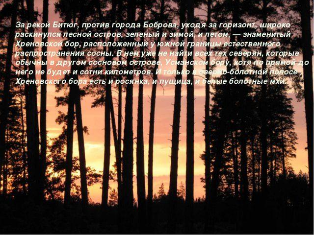 За рекой Битюг, против города Боброва, уходя за горизонт, широко раскинулся л...