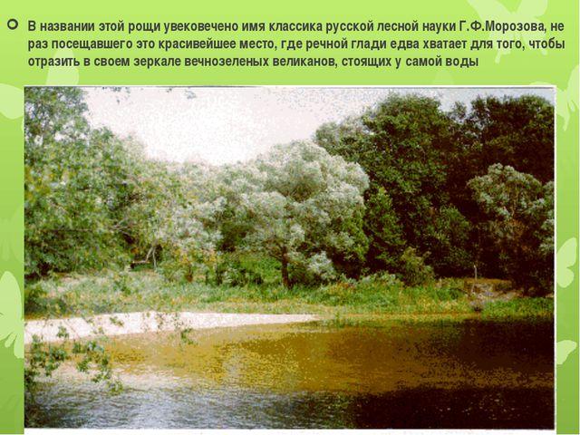 В названии этой рощи увековечено имя классика русской лесной науки Г.Ф.Морозо...
