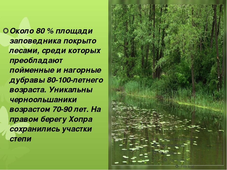 Около 80 % площади заповедника покрыто лесами, среди которых преобладают пойм...