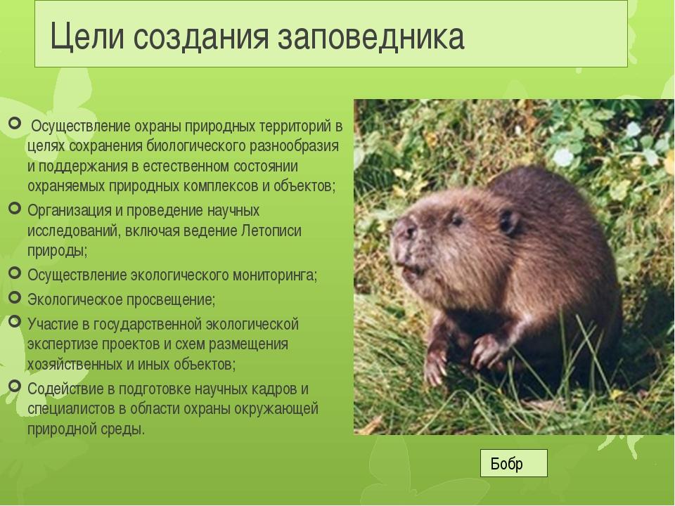 Цели создания заповедника Осуществление охраны природных территорий в целях...