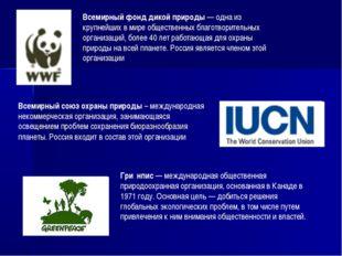 Всемирный фонд дикой природы — одна из крупнейших в мире общественных благотв