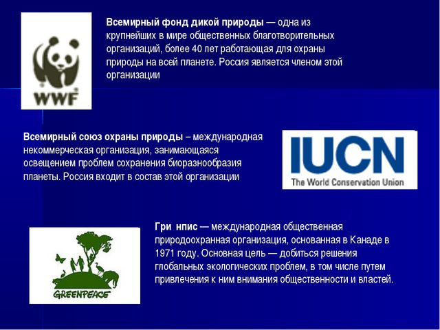 Всемирный фонд дикой природы — одна из крупнейших в мире общественных благотв...