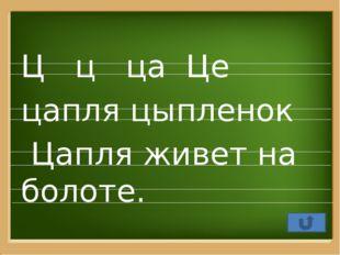 Автор презентации Зинкевич Наталья Николаевна учитель начальных классов МБОУ