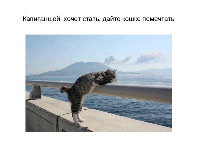 Капитаншей хочет стать, дайте кошке помечтать