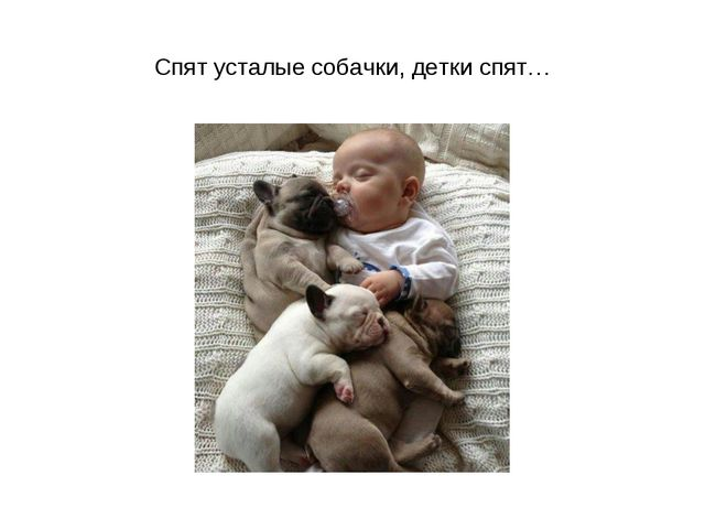 Спят усталые собачки, детки спят…