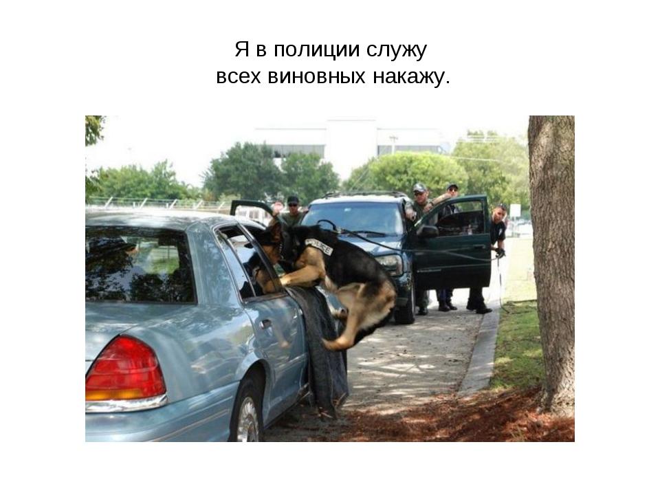 Я в полиции служу всех виновных накажу.