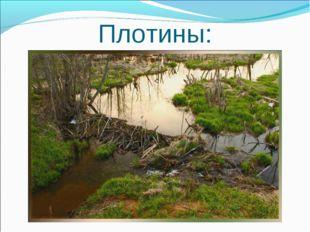 Плотины: