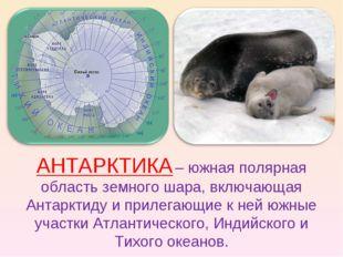 АНТАРКТИКА – южная полярная область земного шара, включающая Антарктиду и при