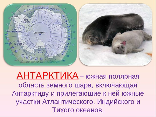 АНТАРКТИКА – южная полярная область земного шара, включающая Антарктиду и при...