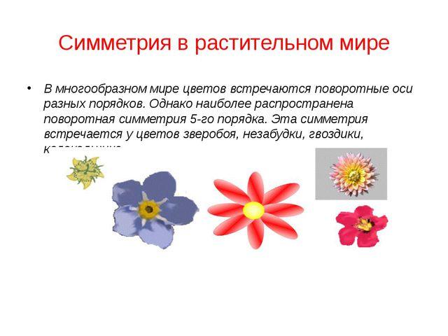 Симметрия в растительном мире В многообразном мире цветов встречаются поворот...