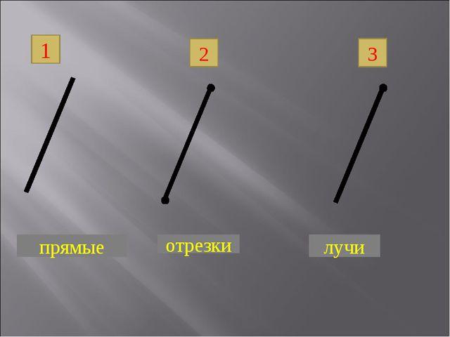1 2 3 прямые отрезки лучи