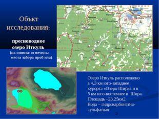 Объкт исследования: пресноводное озеро Иткуль (на снимке отмечены места забо