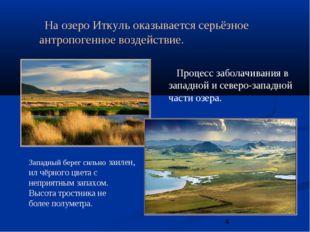 Процесс заболачивания в западной и северо-западной части озера. На озеро Итк