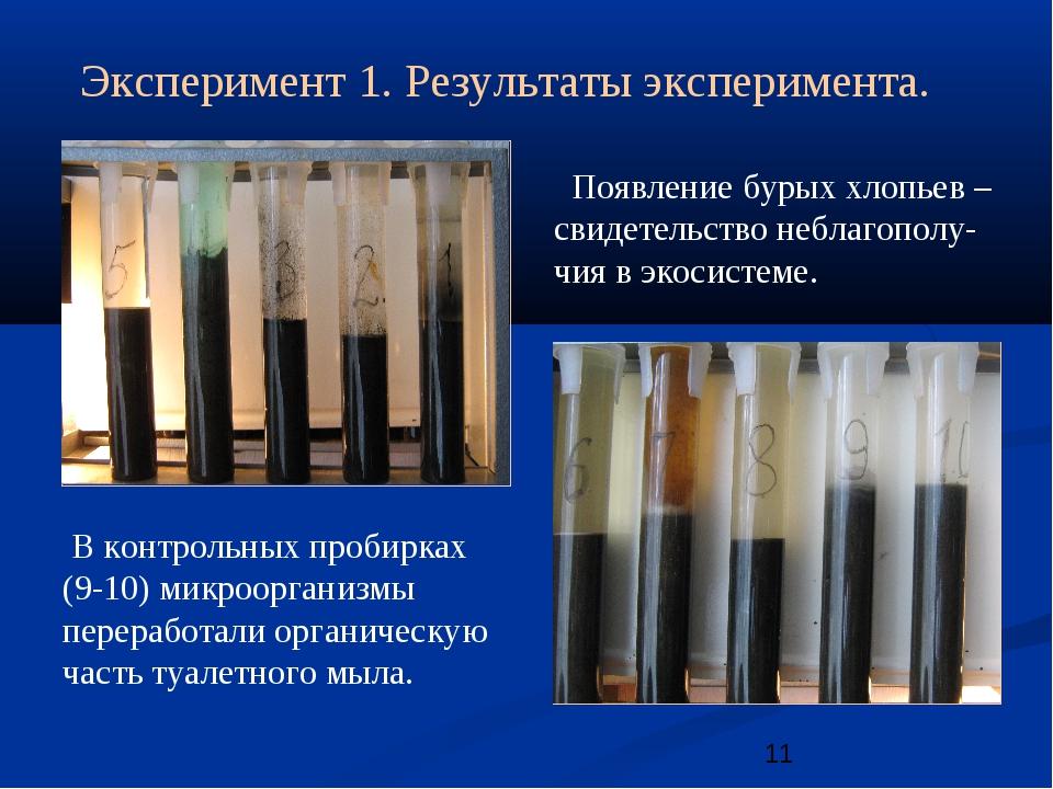 Эксперимент 1. Результаты эксперимента. В контрольных пробирках (9-10) микроо...