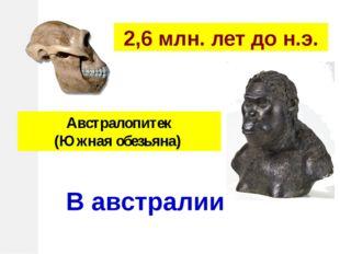 Австралопитек (Южная обезьяна) 2,6 млн. лет до н.э. В австралии