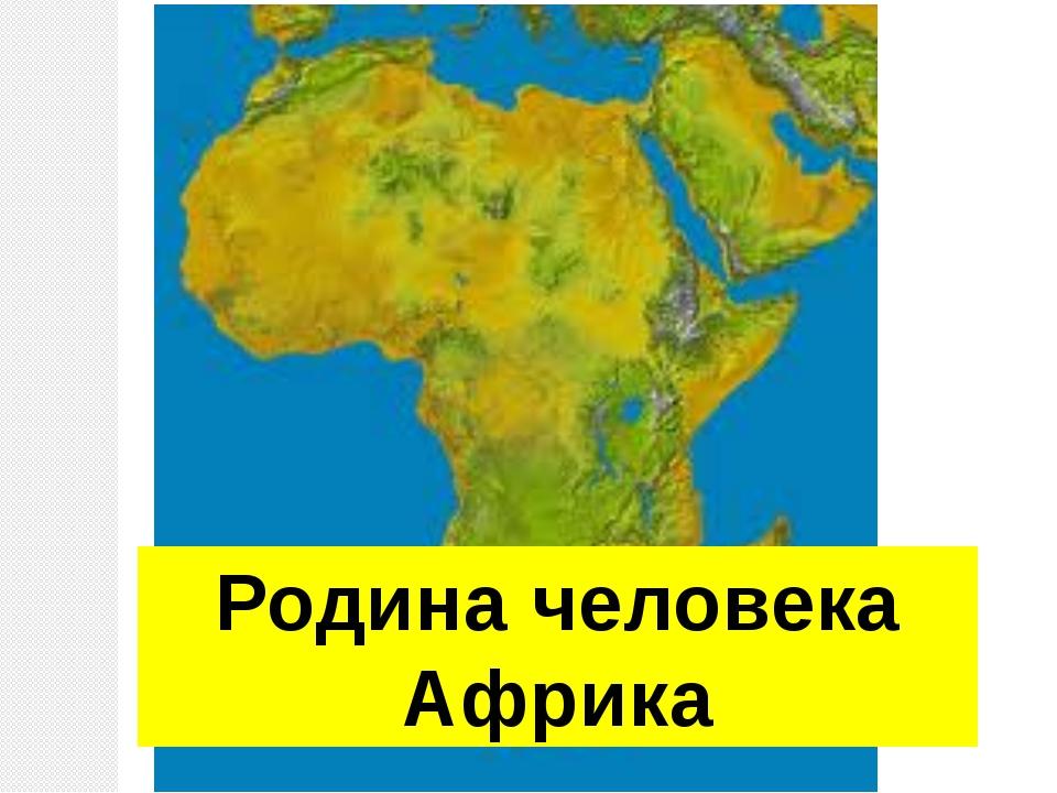 Родина человека Африка