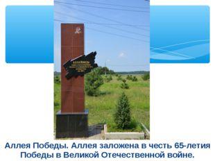 Аллея Победы. Аллея заложена в честь 65-летия Победы в Великой Отечественной