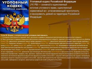 Уголовный кодекс Российской Федерации (УК РФ)— основной и единственный исто